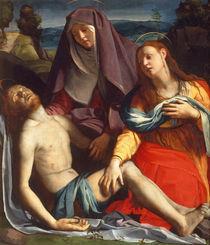A.Bronzino, Toter Christus mit Maria... von AKG  Images