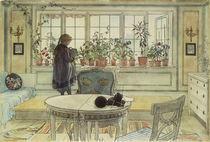 C.Larsson, Das Blumenfenster by AKG  Images