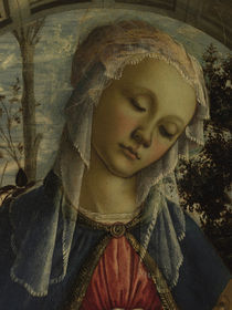 Botticelli, Madonna im Rosenhag, Det. by AKG  Images