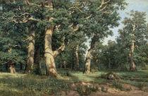 Schischkin, Eichenhain/ 1887 by AKG  Images