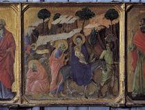 Duccio, Flucht nach Aegypten von AKG  Images
