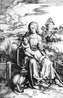 Duerer, Maria mit der Meerkatze by AKG  Images