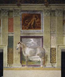Giulio Romano, Pferd der Gonzaga by AKG  Images