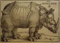 A.Duerer, Rhinozeros / Holzschnitt, 1515 von AKG  Images