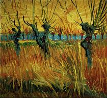 Van Gogh/Weiden bei Sonnenuntergang/1888 by AKG  Images