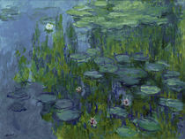 Claude Monet, Nympheas (Seerosen) by AKG  Images