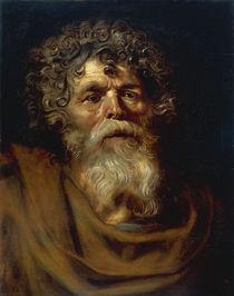 P.P.Rubens, Baertiger alter Mann von AKG  Images