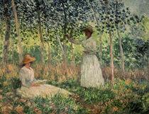C.Monet, Suzanne und Blanche Hoschede von AKG  Images