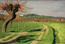 F.Vallotton, Cagne-Tal by AKG  Images