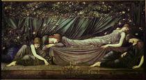 E.Burne Jones, Die schlafende Schoene von AKG  Images