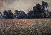 C.Monet, Mohnblumen bei Giverny von AKG  Images