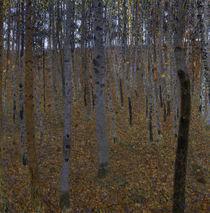 Gustav Klimt, Buchenwald von AKG  Images