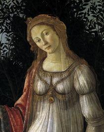 Botticelli, La Primavera, Kopf von AKG  Images