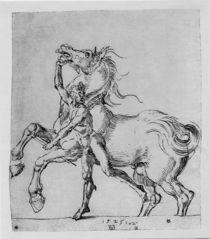 A.Duerer, Nackter Mann mit Pferd by AKG  Images