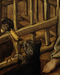 Tintoretto, Katze und Ente by AKG  Images
