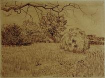 V.v.Gogh, Park mit Strauch von AKG  Images