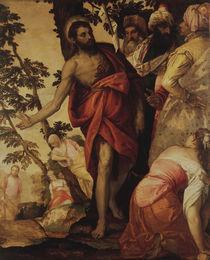 P.Veronese, Predigt Johannes des Taeufers von AKG  Images