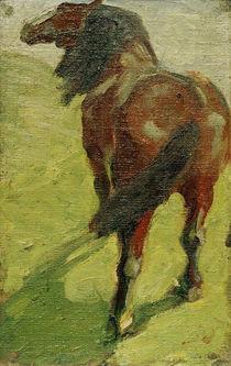 Franz Marc, Studie eines Pferdes von AKG  Images