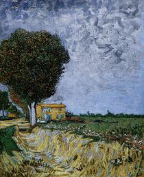 V.v.Gogh, Allee bei Arles by AKG  Images