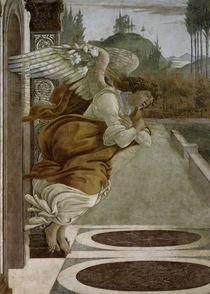 Botticelli, Engel der Verkuendigung by AKG  Images