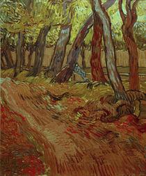V.van Gogh, Garten des Hospitals von AKG  Images