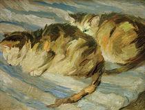 F.Marc, Zwei graue Katzen (Studie II) von AKG  Images