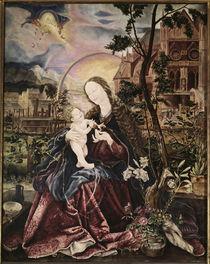Gruenewald, Stuppacher Madonna von AKG  Images
