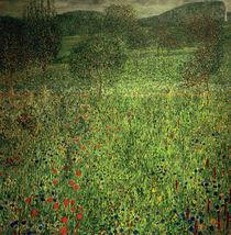 Gustav Klimt, Gartenlandschaft von AKG  Images