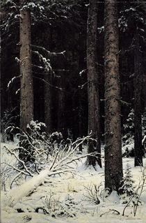 I.I.Schischkin, Tannenwald im Winter by AKG  Images