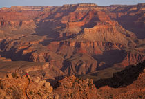 Grand Canyon von Scott Spiker