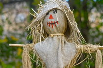 scarecrow by ushkaphotography