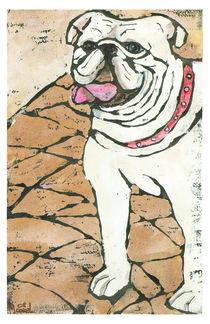 bulldogge edna by Melanie Labsch