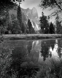Reflection, Yosemite National Park by Alex Soh