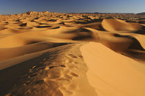 Marokko, Central Marokko, Merzouga von Jason Friend