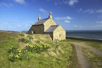 England, Northumberland, Northumberland Heritage Coast by Jason Friend