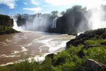 Argentina, Misiones, Iguazu National Park by Jason Friend