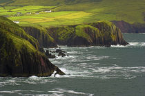 Ireland County Kerry Dingle by Jason Friend