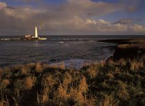 England, Tyne &Amp; Wear, St Marys Island. by Jason Friend