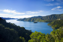New Zealand, Marlborough, Queen Charlotte Sound by Jason Friend