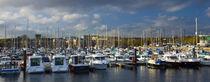 England, Tyne &Amp; Wear, Royal Quays. by Jason Friend