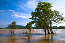 Laos, Si Phan Don (Four Thousand Islands), Don Khon. by Jason Friend