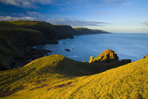 Scotland, Scottish Borders, St Abbs Nature Reserve. by Jason Friend