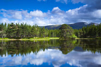 Scotland, Scottish Highlands, Cairngorms National Park. by Jason Friend