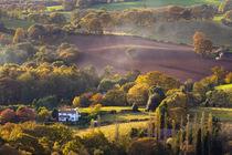 England, Staffordshire / Worcestershire, Kinver Edge. von Jason Friend
