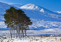 Scotland, Scottish Highlands, Dirrie More. by Jason Friend