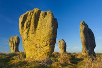 England, Northumberland, Duddo Five Stones. by Jason Friend