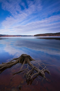 England, Northumberland, Kielder Water &Amp; Forest Park. by Jason Friend