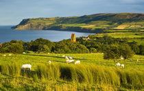 England, North Yorkshire, North York Moors Nationalpark. von Jason Friend