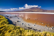Bolivien, Southern Altiplano, Laguna Colorada. von Jason Friend