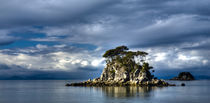 'New Zealand, Nelson, Abel Tasman National Park.' by Jason Friend